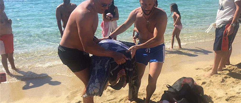 Λουόμενοι έσωσαν τραυματισμένη θαλάσσια χελώνα (εικόνες)