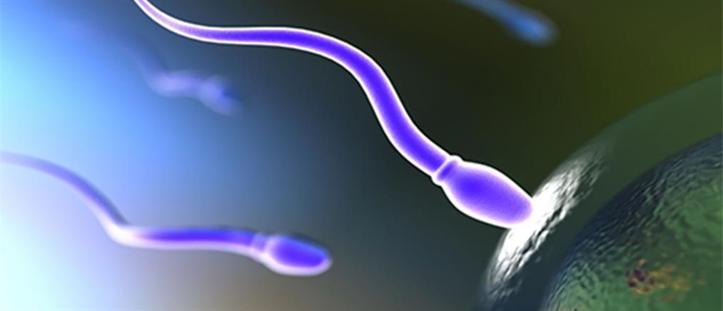 Τι προκαλεί την έλξη ωαρίων και σπερματοζωαρίων;