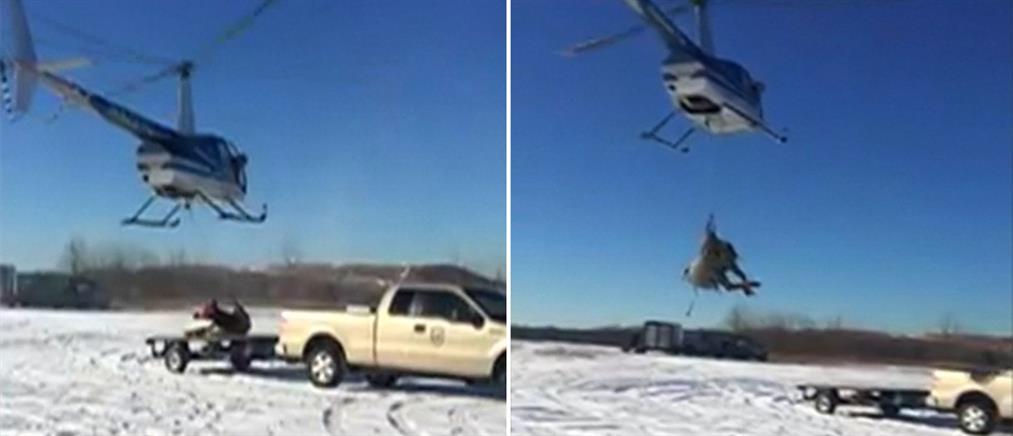Μεταφορά ταράνδων με ελικόπτερα! (βίντεο)