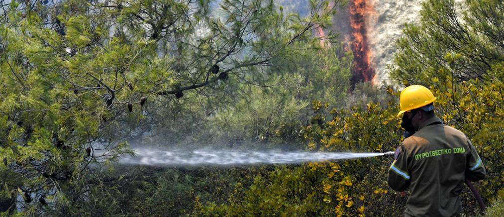 Φωτιά στο δάσος του Σκρα