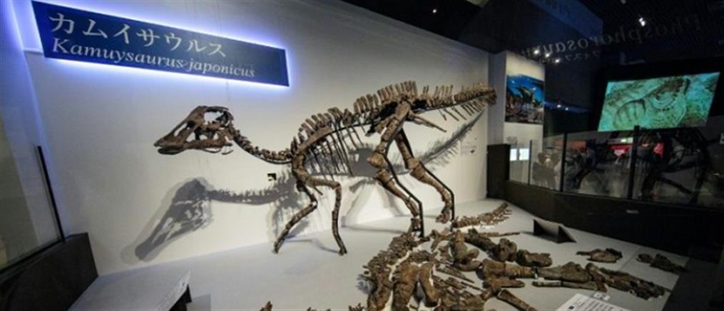 Επιστήμονες ανακάλυψαν νέο είδος δεινοσαύρου