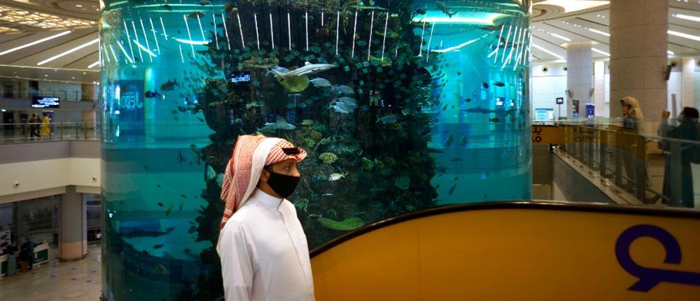 """Σαουδική Αραβία: 7 τρις δολάρια για """"πράσινη"""" ανάπτυξη"""