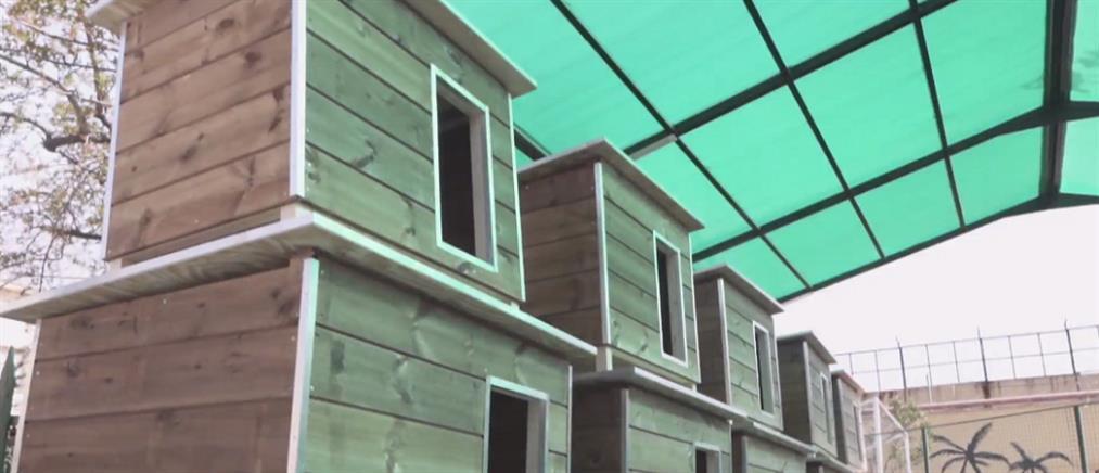 Ξύλινα σπιτάκια για αδέσποτα κατασκευάζουν κρατούμενοι φυλακών
