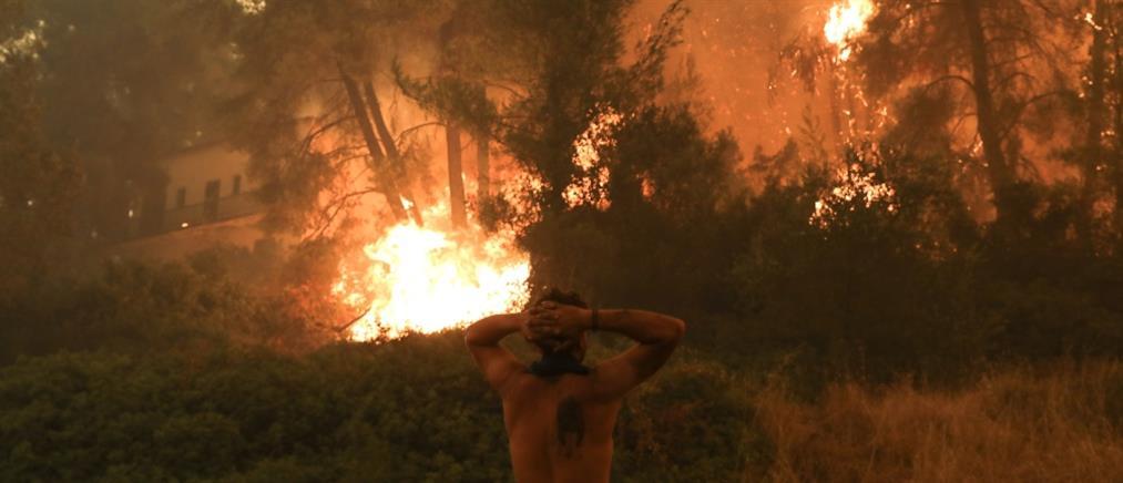 Φωτιά στην Εύβοια: αναφορές για αγνοούμενους στα Ελληνικά