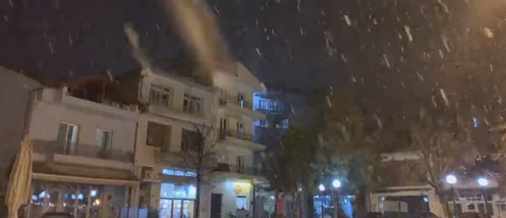 """Κακοκαιρία """"Λέανδρος"""": Χιόνια στην Φλώρινα (βίντεο)"""