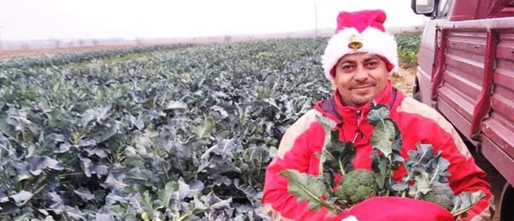 Κιλκίς: καλλιέργεια λαχανικών υπό.... χριστουγεννιάτικες μελωδίες (εικόνες)