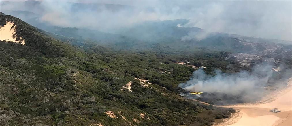 Φωτιά στην νήσο Φρέιζερ (εικόνες)