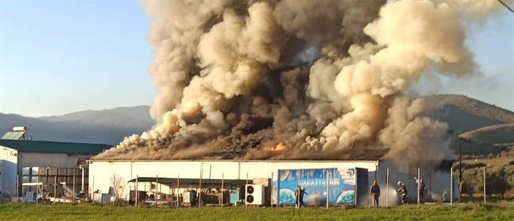 Μεγάλη φωτιά σε τυροκομείο