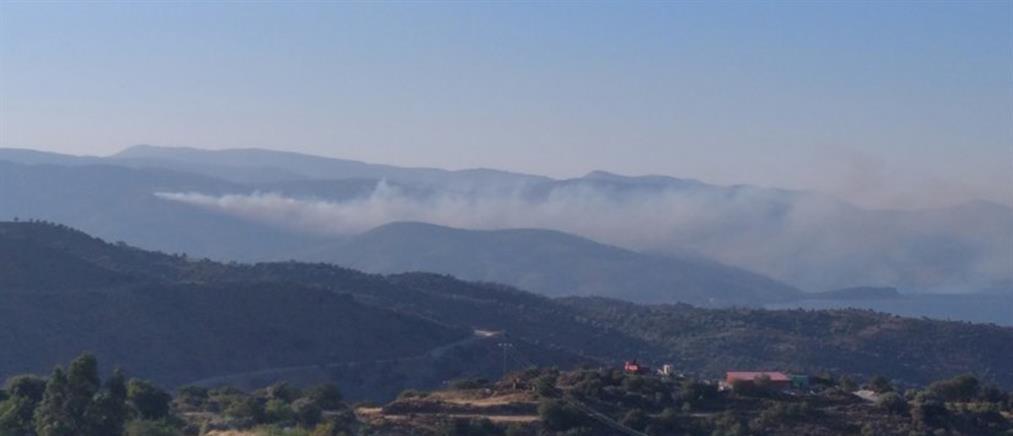 Χίος: Φωτιά στην Κατάβαση (εικόνες)