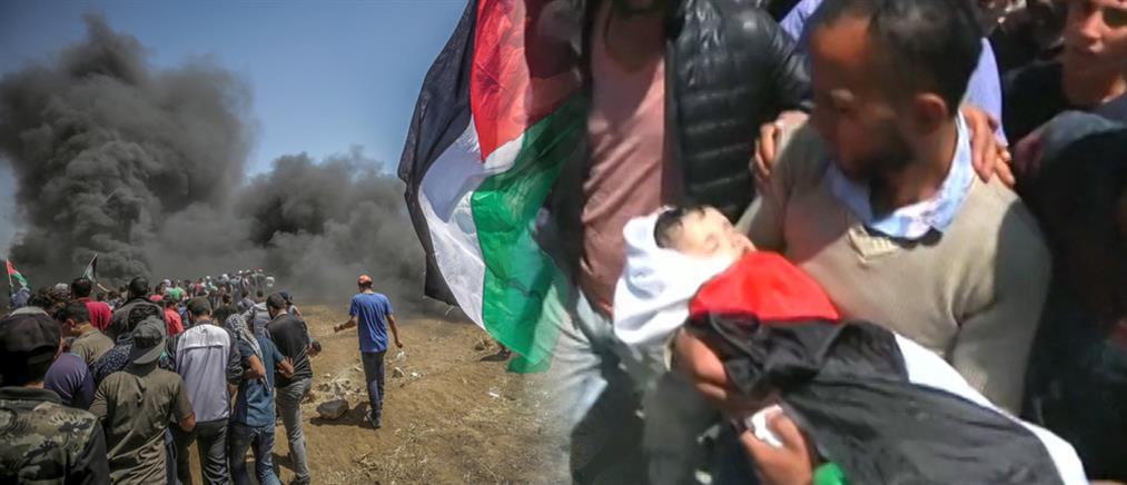 Θρήνος και κατακραυγή για την αιματοχυσία στη Γάζα (βίντεο)