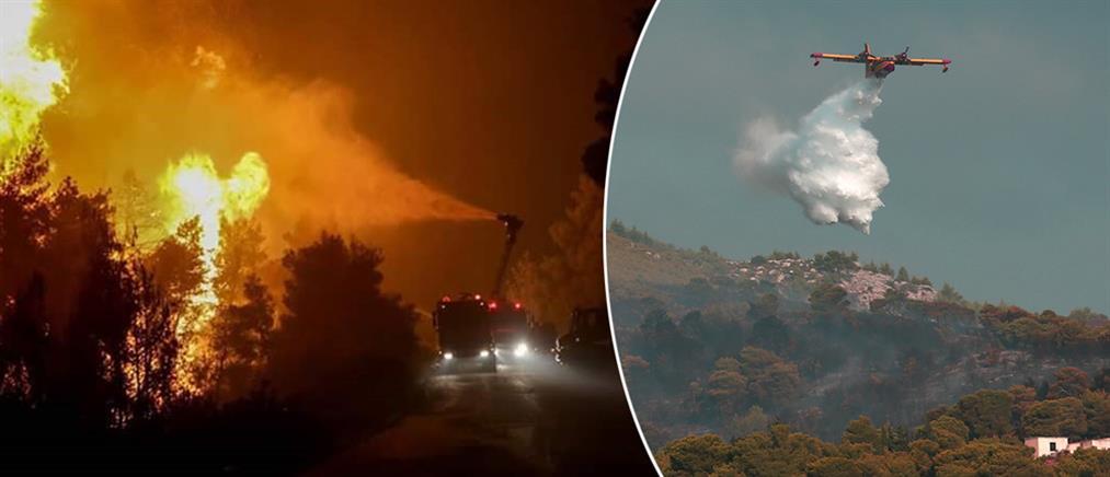 Φωτιά στη Νέα Μάκρη: όλα δείχνουν εμπρησμό