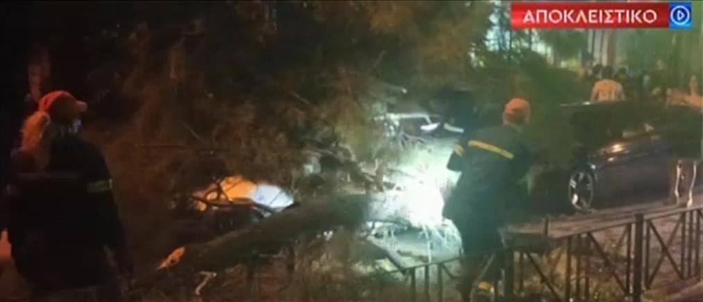Αποκλειστικά στον ΑΝΤ1: Ο απεγκλωβισμός πεζού που καταπλακώθηκε από δέντρο (βίντεο)