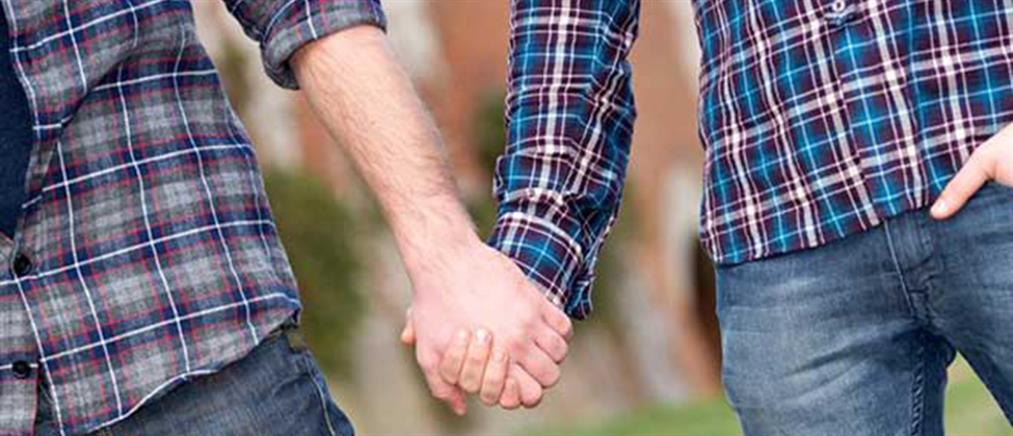 Ιρλανδία: Σε ισχύ ο νόμος για τους γάμους ομοφυλοφίλων