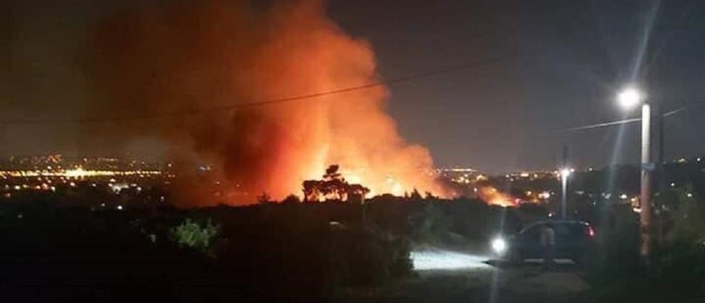 Φωτιά σε Γέρακα και Άγιο Στέφανο