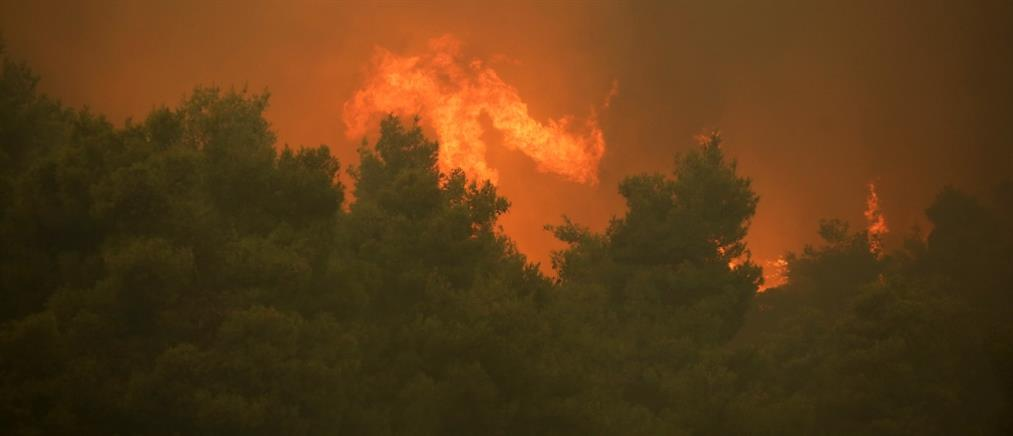 Σε ποιες περιοχές θα είναι υψηλός ο κίνδυνος πυρκαγιάς τη Δευτέρα (χάρτης)