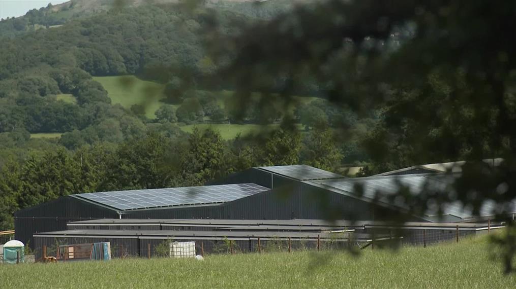 Έκλεισε φάρμα μετά τον εντοπισμό κρουσμάτων κορονοϊού
