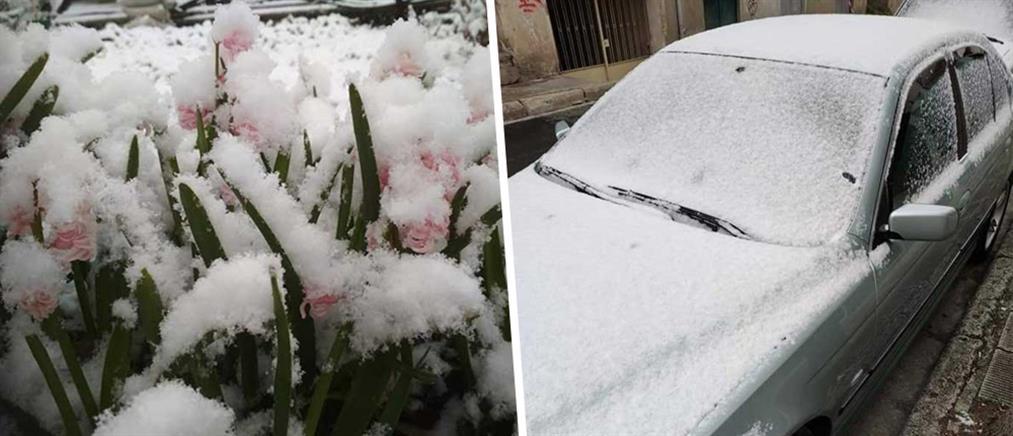 Χιόνια μέσα στην άνοιξη (εικόνες)