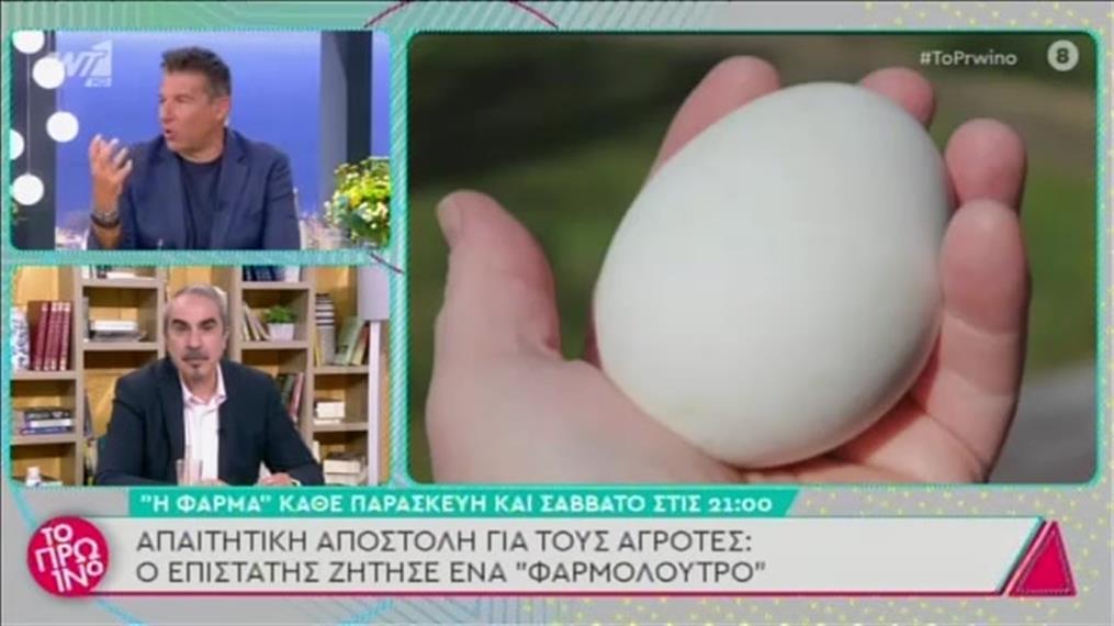 Η Φάρμα: Ενθουσιασμός για το αυγό της χρονιάς
