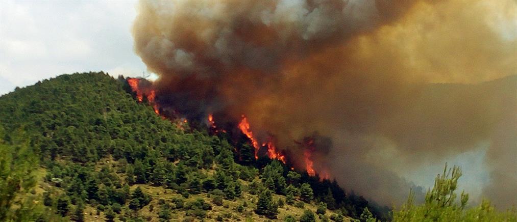 Συνεχίζεται για τρίτη μέρα η φωτιά στα Δερβενοχώρια