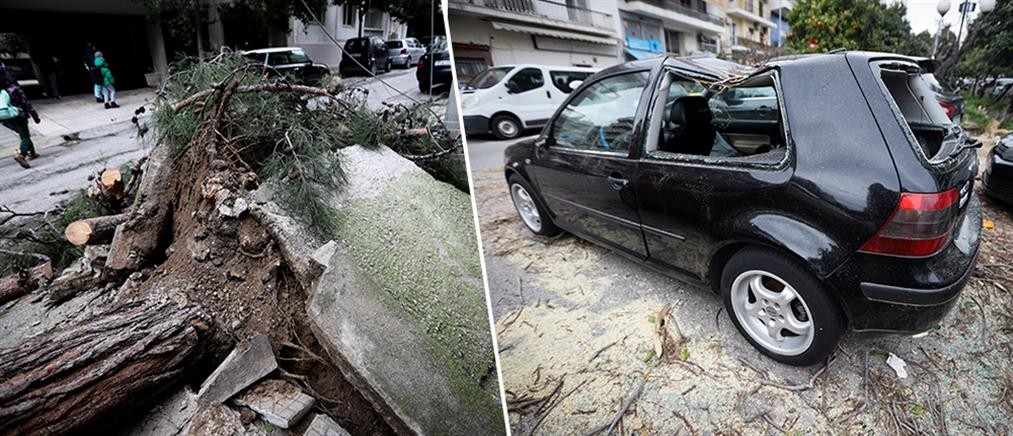 Δέντρο καταπλάκωσε 12 αυτοκίνητα στη Νέα Σμύρνη