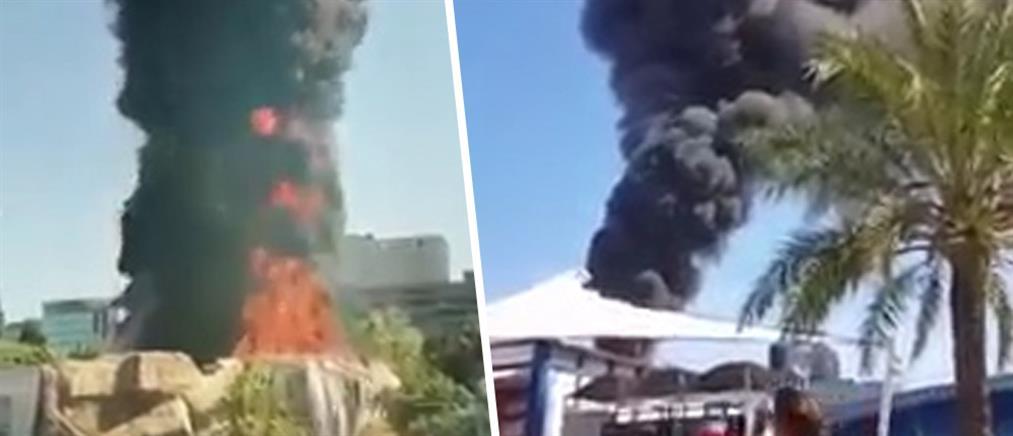 Μεγάλη φωτιά σε ενυδρείο (βίντεο)