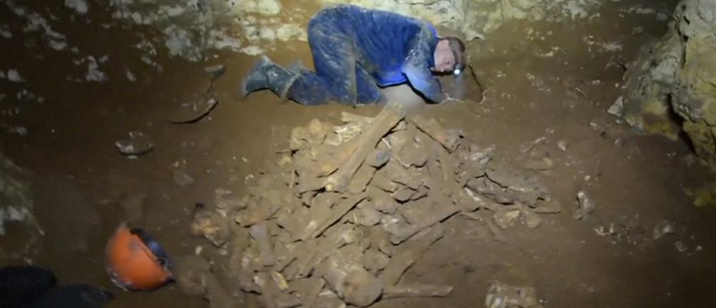 Σκελετός μαμούθ εντοπίστηκε στην Κριμαία (βίντεο)
