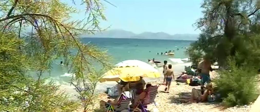 """Οι άγνωστες παραλίες-""""διαμάντια"""" της Αττικής (βίντεο)"""