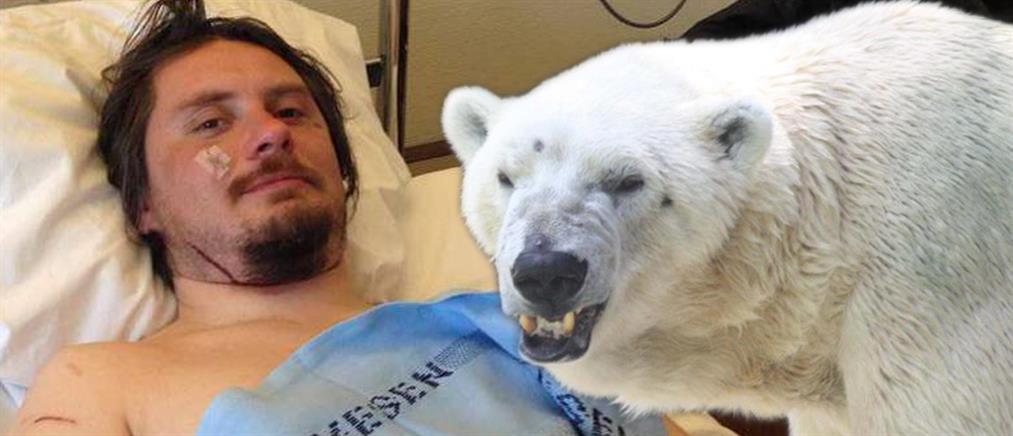 Τουρίστας δέχθηκε επίθεση από πολική αρκούδα