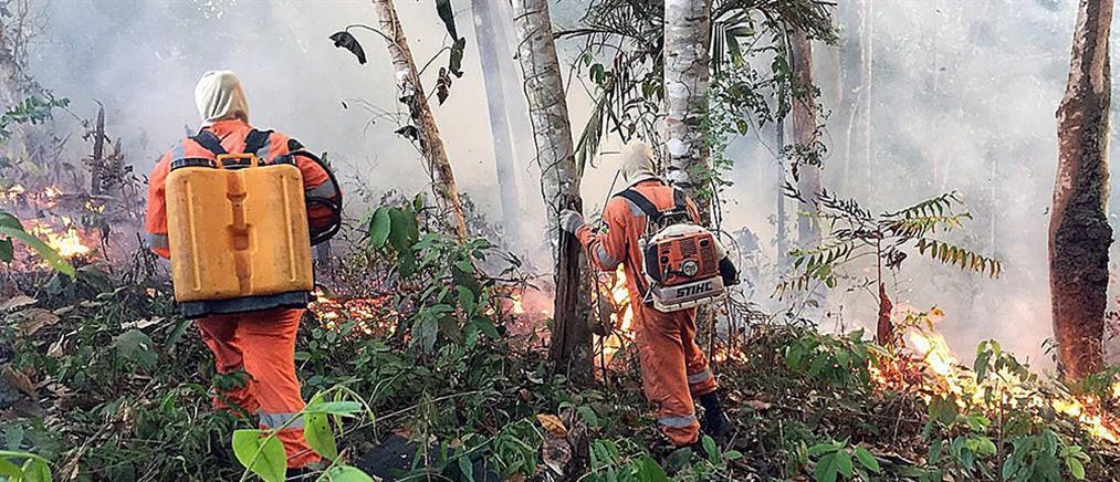 Τσίπρας: Οι φωτιές στον Αμαζόνιο απειλούν το κοινό μας σπίτι, τη Γη