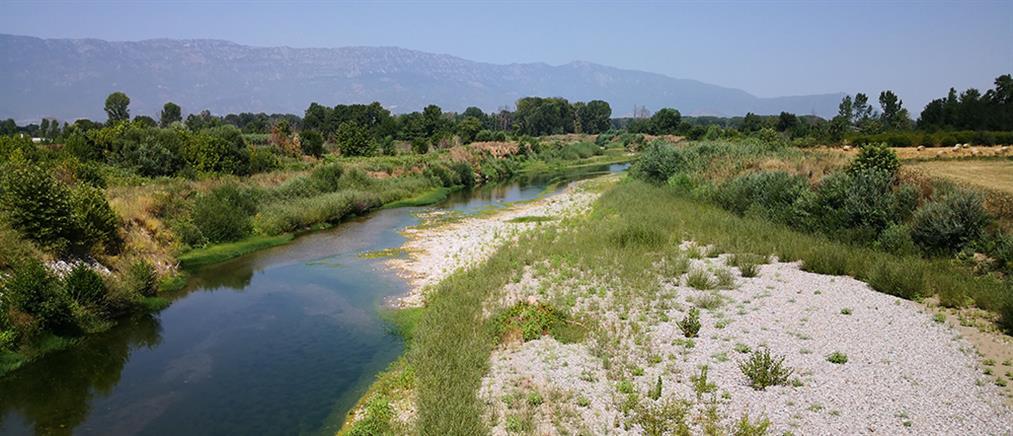 Τρίκαλα – Πηνειός: Το ποτάμι έγινε ρυάκι (εικόνες)