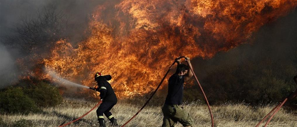 Ολονύχτια μάχη με τις φλόγες στις Σπέτσες