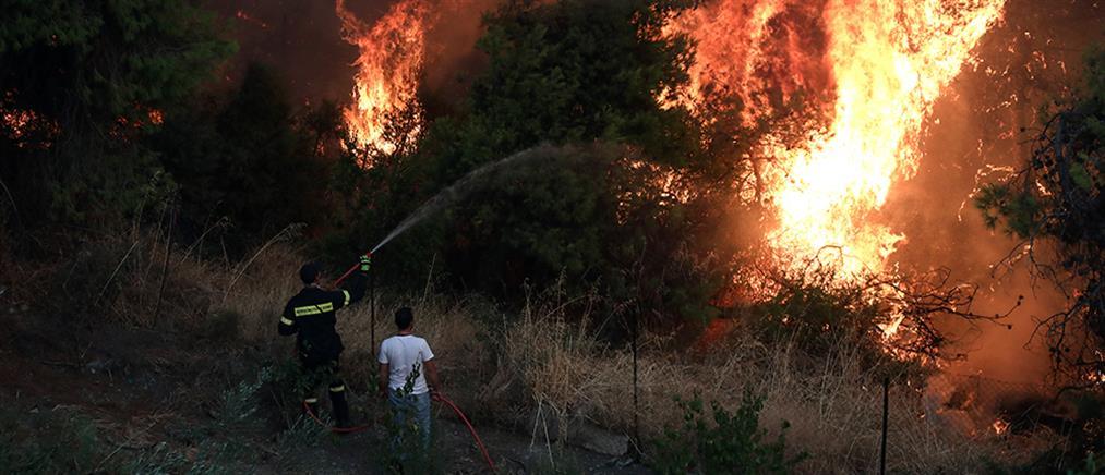 Πολύ υψηλός κίνδυνος πυρκαγιάς την Παρασκευή