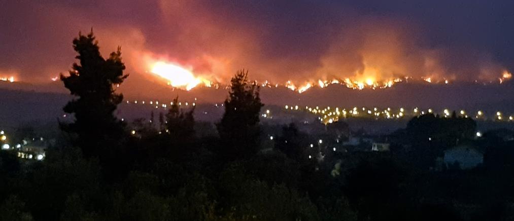 Φωτιά στην Αττική: εντολή εκκένωσης σε Καπανδρίτι, Πολυδένδρι και Άγιο Στέφανο