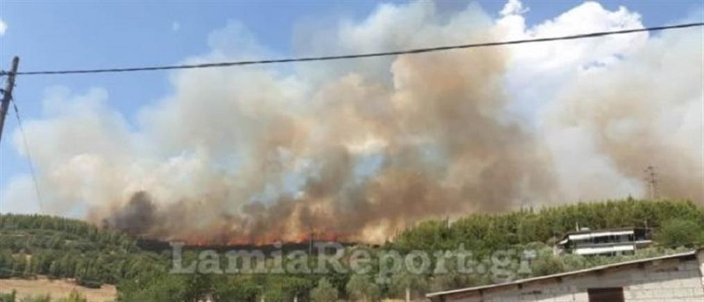 Συναγερμός για μεγάλη φωτιά στη Μακρακώμη