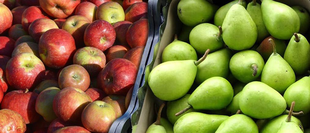 Τεράστια ποσότητα ακατάλληλων φρούτων κατέσχεσαν οι Αρχές