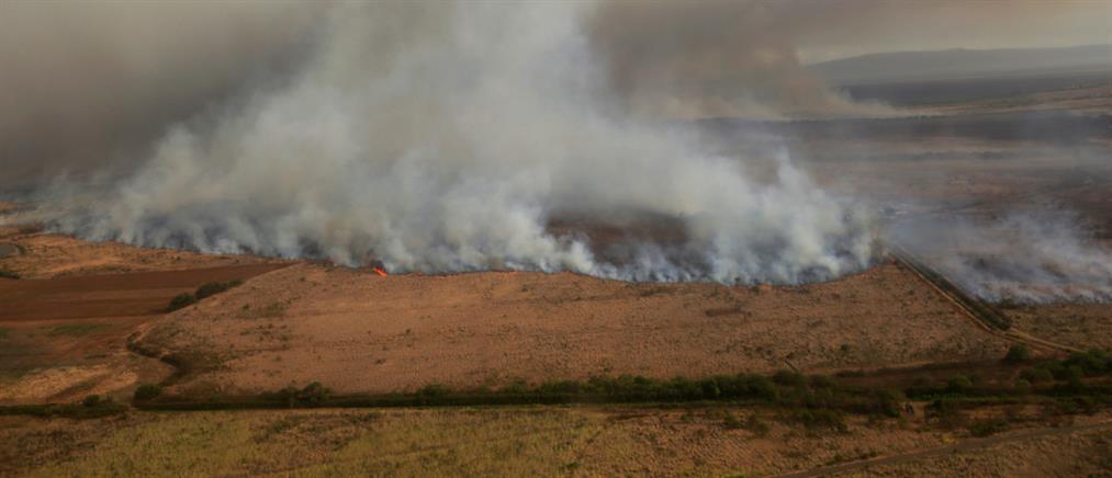 Στις φλόγες το Μάουι στη Χαβάη (βίντεο)