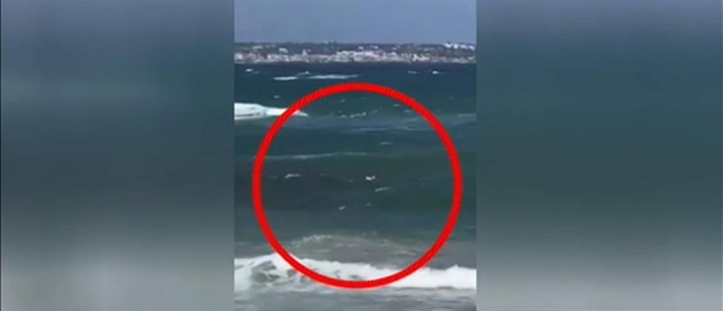 Βίντεο-ντοκουμέντο: Ναυαγοσώστης σώζει Ρωσίδα τουρίστρια που είχε παρασυρθεί από τα κύματα