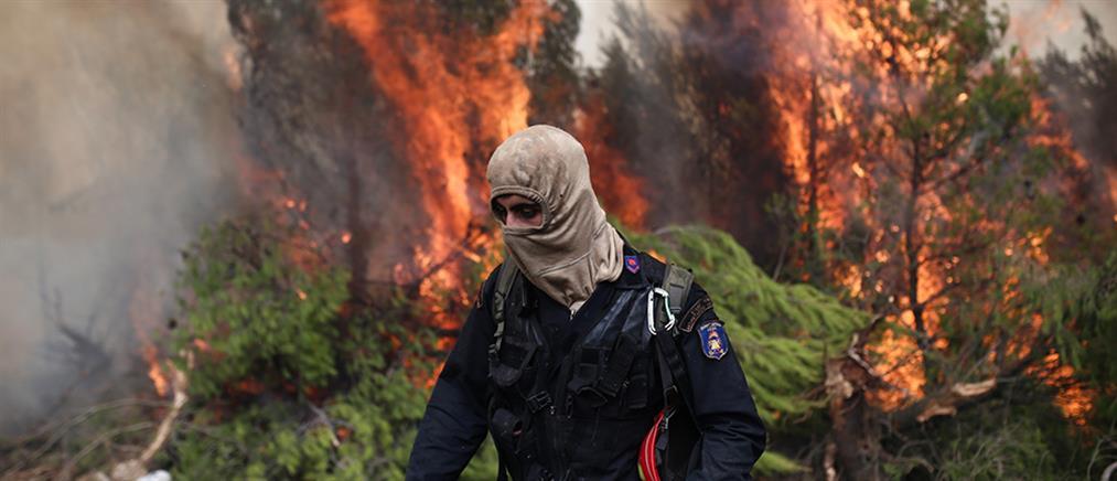"""Οργή σε Κύθηρα και Μάνη για το """"παιχνίδι των πυροσβεστών"""" (βίντεο)"""