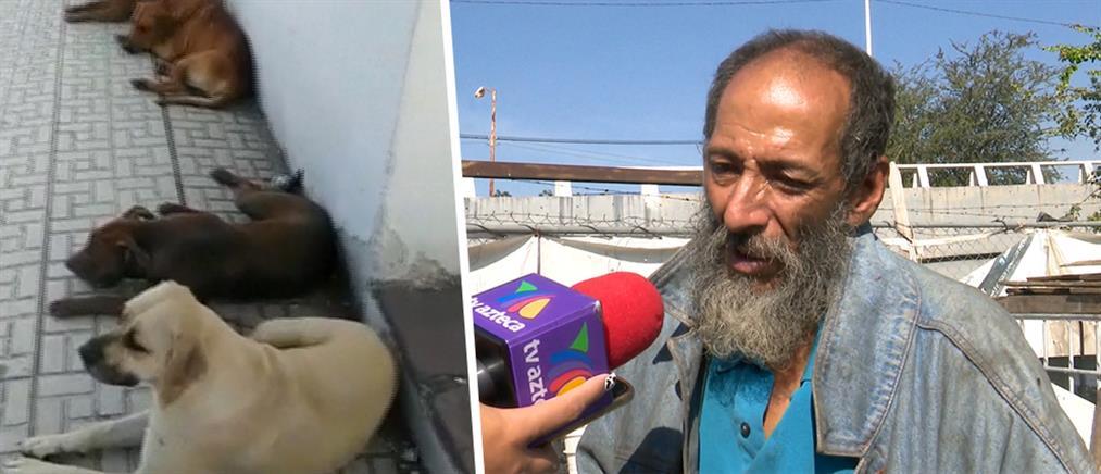 Δηλητηρίασαν σκυλιά –συντρόφους άστεγου (εικόνες)