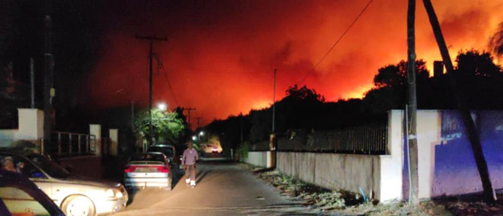 Φωτιά στον Σχίνο Λουτρακίου: Οι φλόγες έφθασαν στα σπίτια