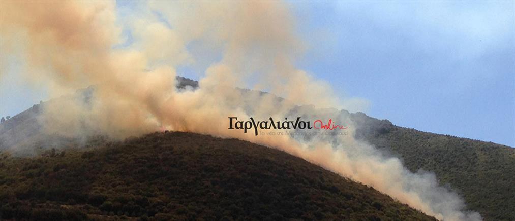 Φωτιά στη Μεσσηνία (εικόνες)