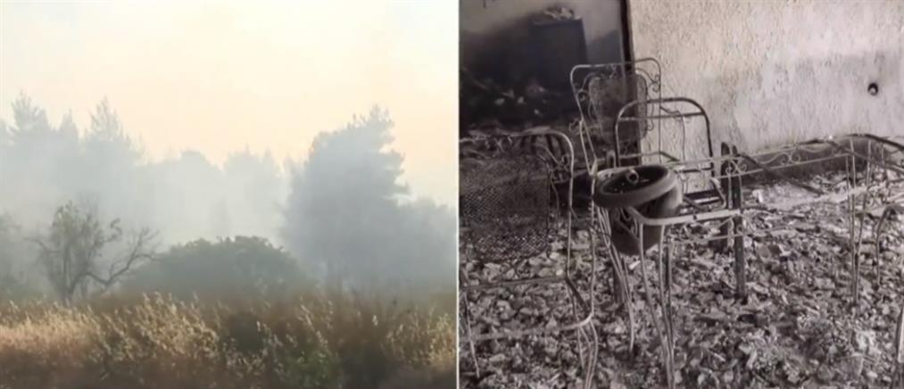 Φωτιά στα Γεράνεια Όρη - Αντιδήμαρχος Μεγάρων στον ΑΝΤ1: δίναμε μάχη όλη τη νύχτα με τις φλόγες (βίντεο)