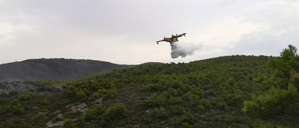 Ζάκυνθος: Οριοθετήθηκε η μεγάλη πυρκαγιά (βίντεο)