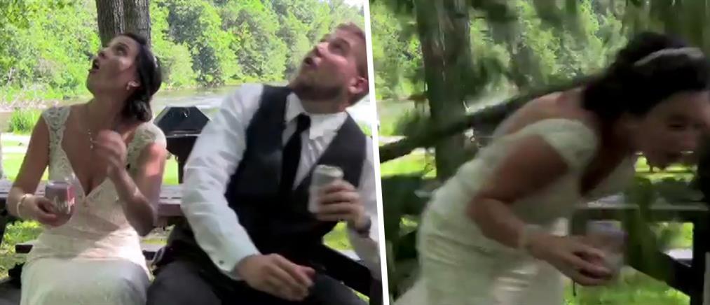 Νεόνυμφοι μιλούσαν για τον γάμο τους, όταν έπεσε… ένα πελώριο κλαρί δέντρου (βίντεο)