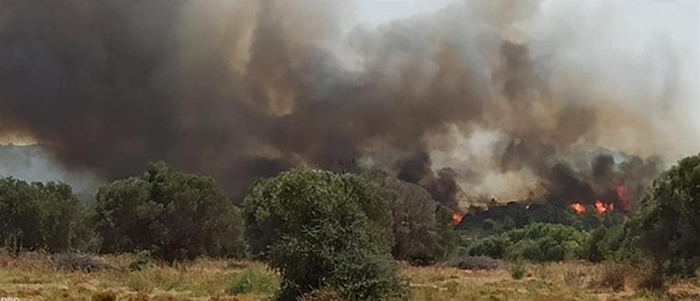 Φωτιές: Πολύ υψηλός κίνδυνος την Τρίτη (χάρτης)