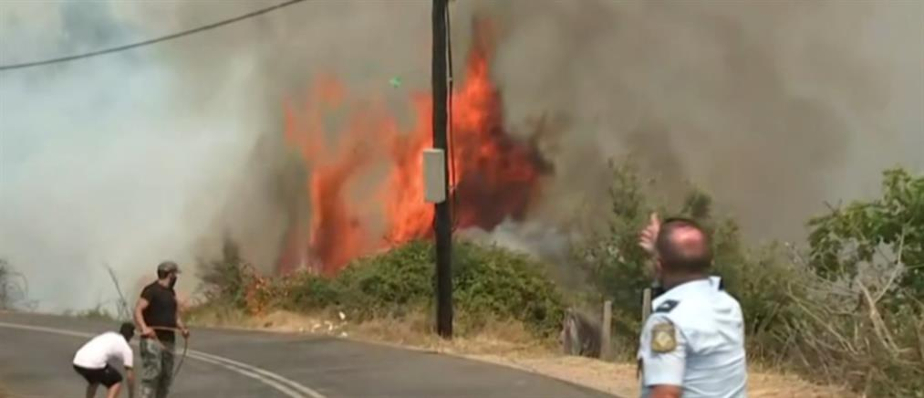 Φωτιές: συνεχίζουν να επιχειρούν οι δυνάμεις πυρόσβεσης στα μέτωπα της Πελοποννήσου