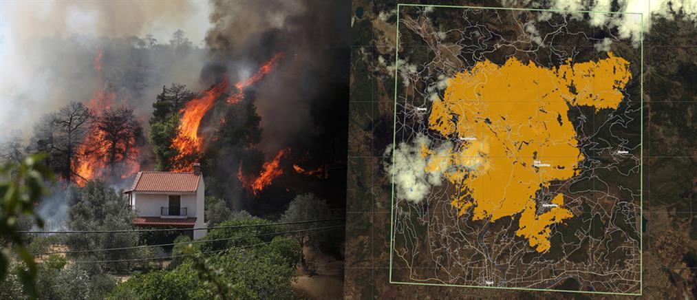 Φωτιά στην Εύβοια: ο επίσημος απολογισμός για την καμένη έκταση (χάρτης)