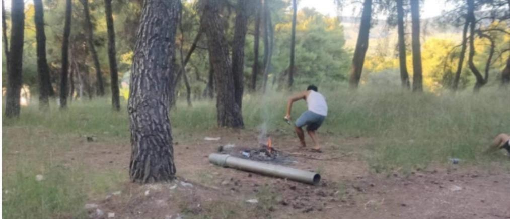 Μετανάστες κάνουν μπάρμπεκιου στο δάσος της Μαλακάσας (βίντεο)