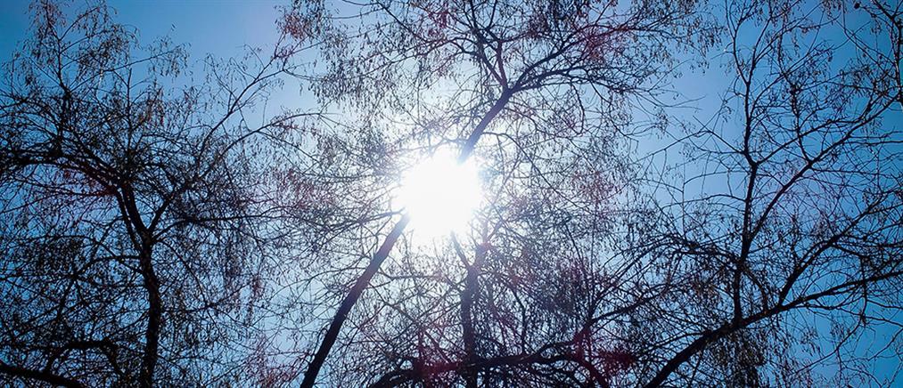 Καιρός: ζέστη και βοριάδες το Σάββατο