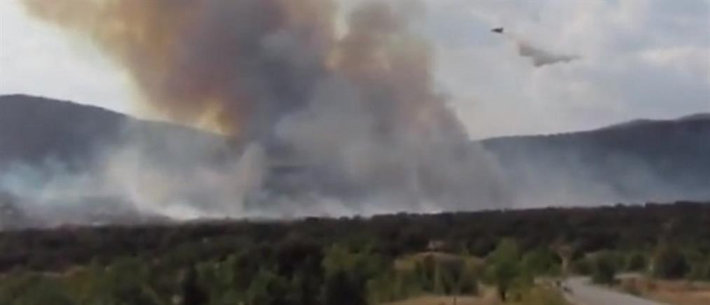 Μεγάλη φωτιά στην Κοζάνη (βίντεο)